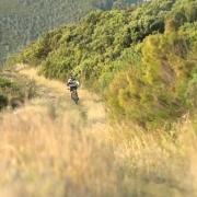 Biking Gardenroute