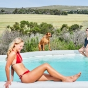 2 People, 1 Dog at the pool Western Cape Accommodation