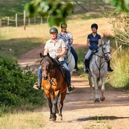 Heidi Maritz führt die Reiter an