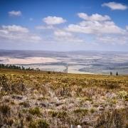 Südafrika Natur Farm