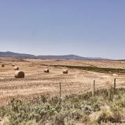 Farm Südafrika
