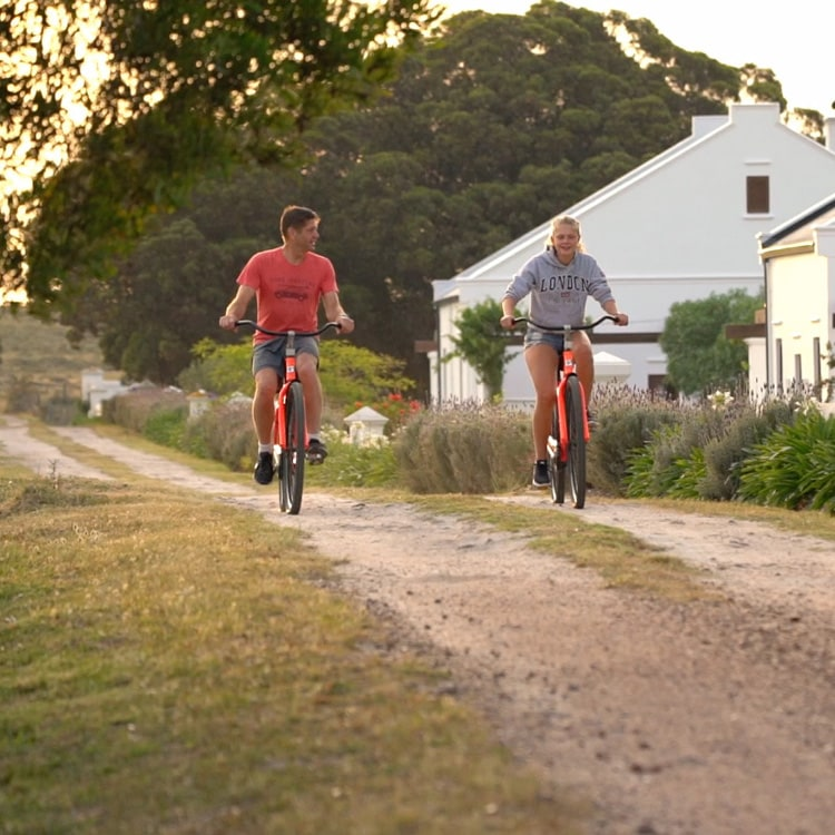 guesthouse selfcatering gardenroute biking