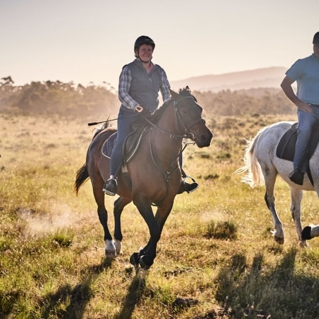 Horse Riding Western Cape