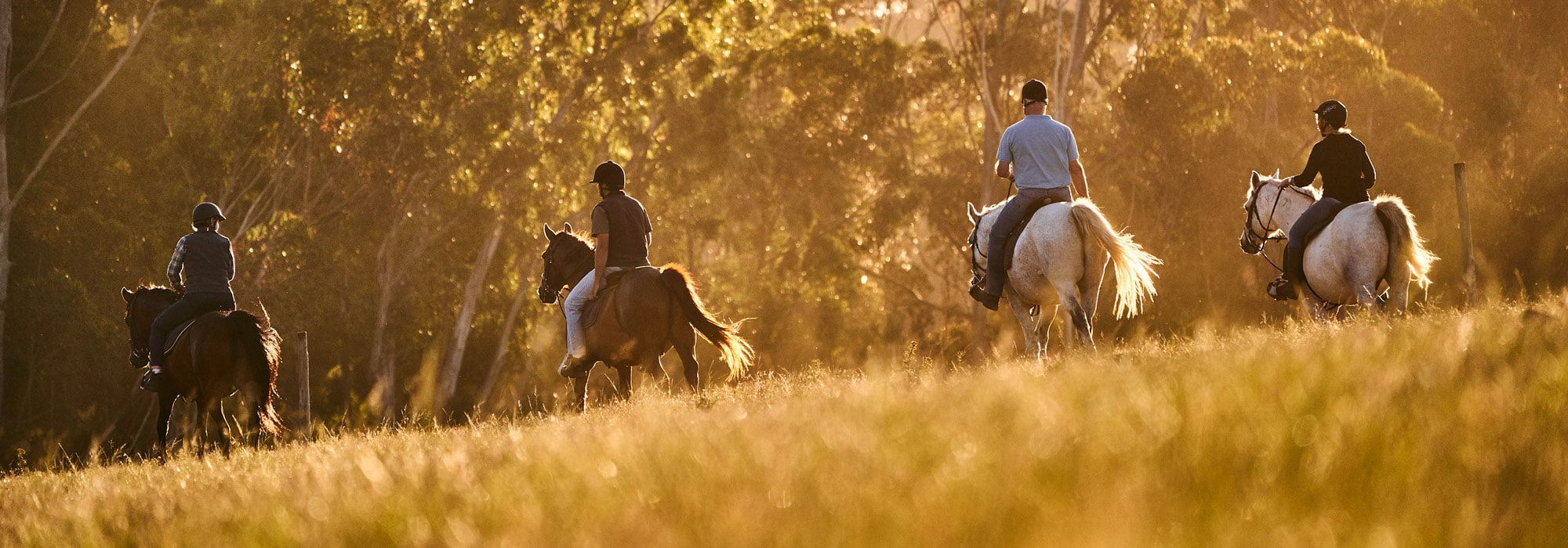 4 People Horseriding in Southafrica