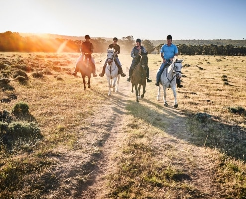 Horseriding Lodge Western Cape