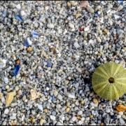 Nahaufnahme Strand